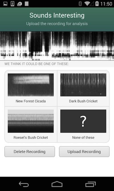 Cicada mobile app screenshot of reports UI